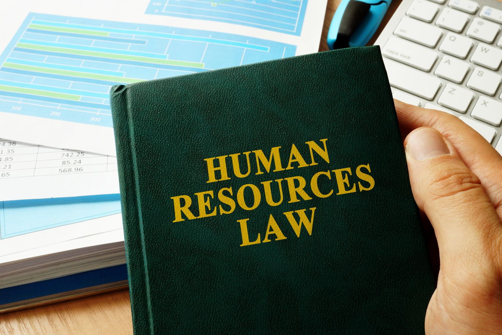 Book with title Human Resources HR Law.